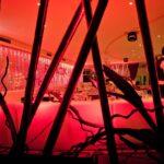 BB disco dinner, Notte Bianca in collaborazione con gli artisti di strada