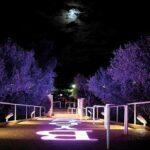 Byblos Club di Riccione, la notte fashion in collina