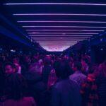 Discoteca Gatto Blu, The Brasilian Show