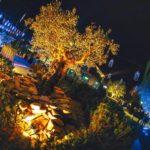 Discoteca Villa Papeete il Sabato notte di Milano Marittima