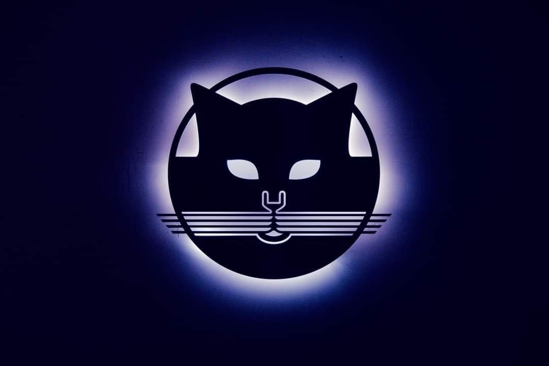 Pasqua 2020 Gatto Blu