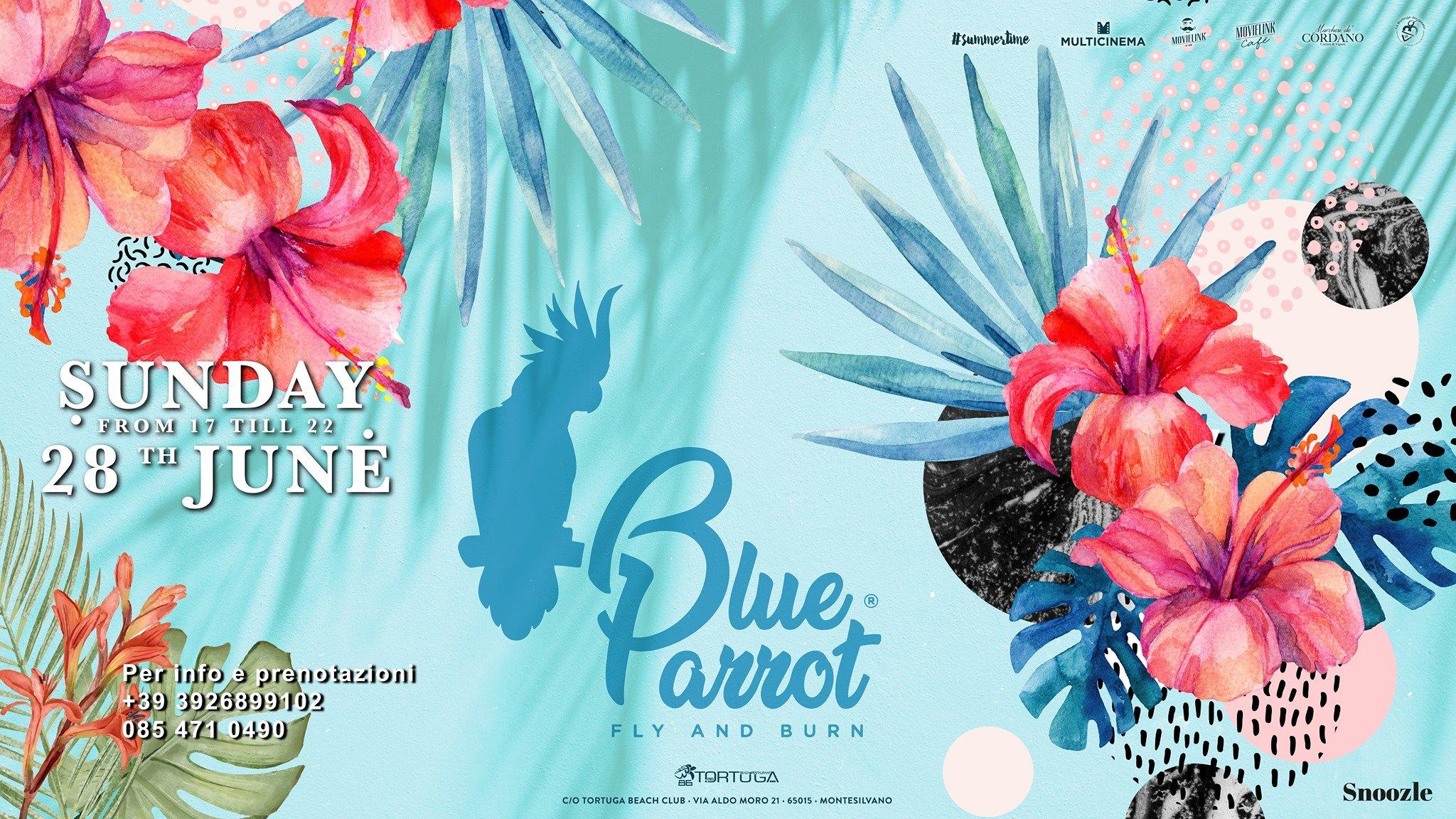BlueParrot Fly and Burn Opening Season Tortuga Pescara