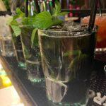 Discoteca Coconuts Rimini, aperto a Settembre tutte le notti