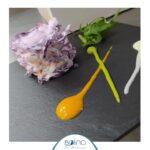 Bolina ristorante di Civitanova Marche, inizia la settimana gialla