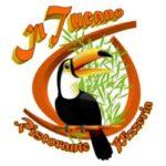 Domenica in musica al Ristorante Tucano di Senigallia
