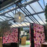 Il pranzo nel tetto di cristallo di Civitanova, ristorante La Serra