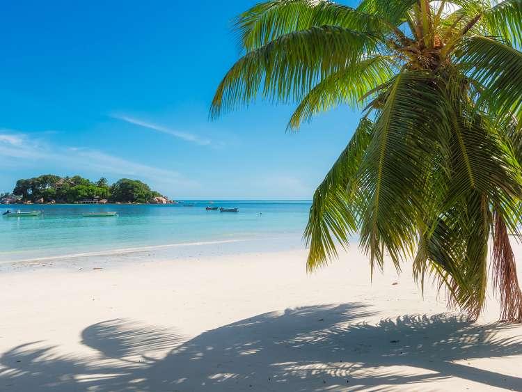 Giamaica, Pacchetti Vacanza