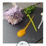 Ristorante Bolina Civitanova Marche, pranzo e cena sul mare