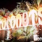 Coconuts Rimini, aperto tutte le sere