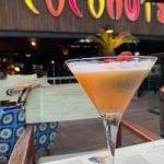 Make Friends al Coconuts Club di Rimini
