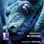 Inaugurazione Estate 2021 Medusa San Benedetto Del Tronto