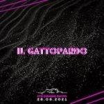 Discoteca Gattopardo di Alba Adriatica, It's coming gatto